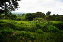 BUKAVU, REPUBLIQUE DEMOCRATIQUE DU CONGO. AVRIL 2016. Sur la route entre Bukavu et le village de Kavunu.